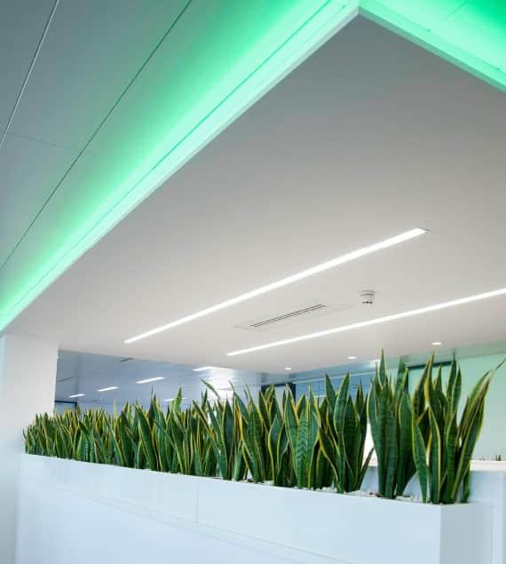 bespoke green ceiling lighting for offices