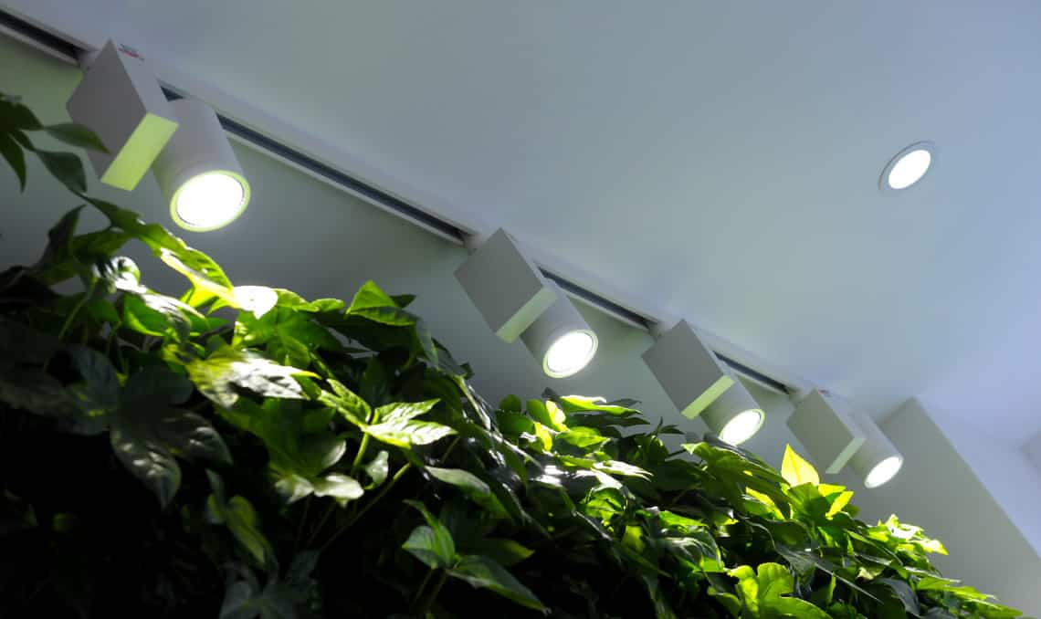bespoke lighting solutions for offices